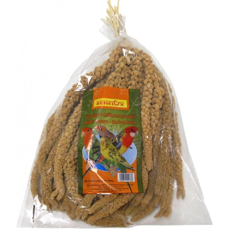 Millet Jaune en grappes Anjou 1kg 1143003 Benelux 7,60 € Ornibird