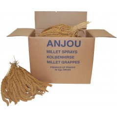 Millet Jaune en grappes Anjou 25kg 1143001 Benelux 121,95 € Ornibird