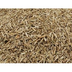 Graines d'herbe au kg - Grizo 103030100/kg Grizo 3,20 € Ornibird