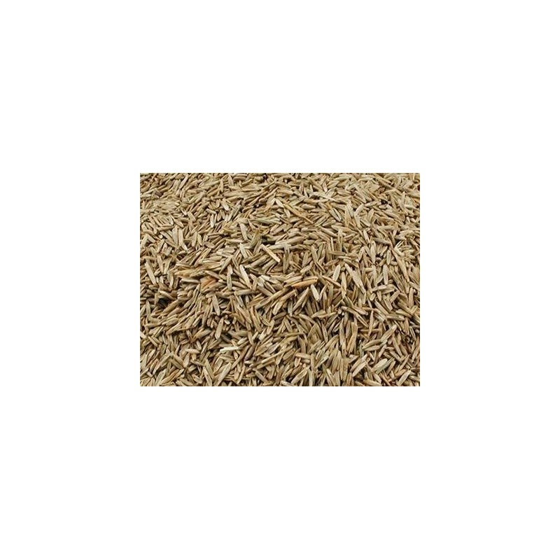 Graines d'herbe au kg - Grizo