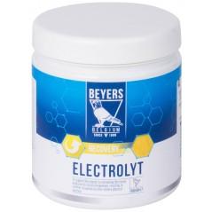 Elektrolyt (récupération après le vol) 500gr - Beyers Plus 023013 Beyers Plus 13,60 € Ornibird