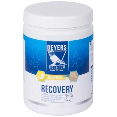 Recovery preparation (protein-based) 600gr - Beyers More 023148 Beyers Plus 16,50 € Ornibird