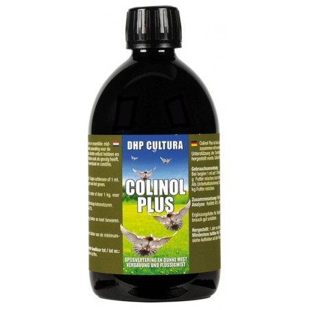 Colinol More (essential fatty acids, the recovery of the disease) 250ml - DHP