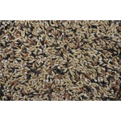 ORNIBIRD - CANARIES PRO DIGEST 20kg, mixing high quality for the canaries - Deli-Nature 700126 Deli-Nature 36,66€ Ornibird