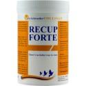 Recup Forte (récuperation) 300gr - Schroeder - Tollisan