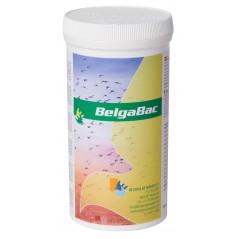 Belgabac 300gr - Belgica De Weerd 60029 Belgica De Weerd 20,30 € Ornibird