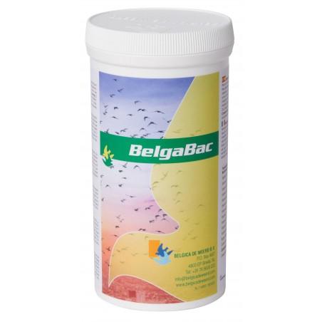 Belgabac 300gr - Belgica De Weerd