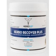 Herbo Recover Plus 500gr - Herbovet 90037 Herbovet 19,49 € Ornibird