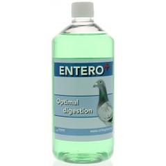Entero (acides - digestion) 1L - Orthophar Pigeon - Pharmacie Flament & Dr. Vanneste 31003 Orthophar - Pharmacie Flament & Dr...