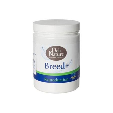 Breed+ 500gr - Deli-Nature