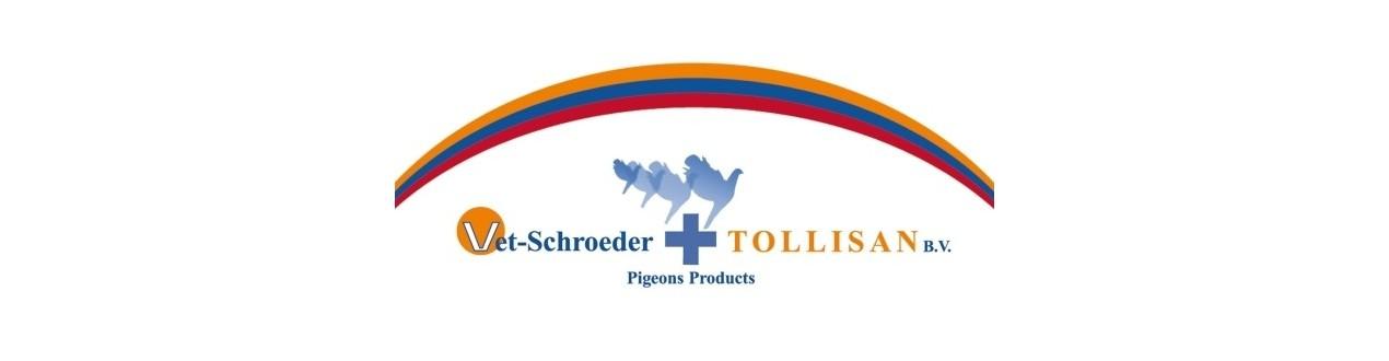 Schroeder - Tollisan