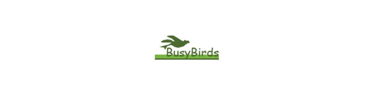 BusyBirds