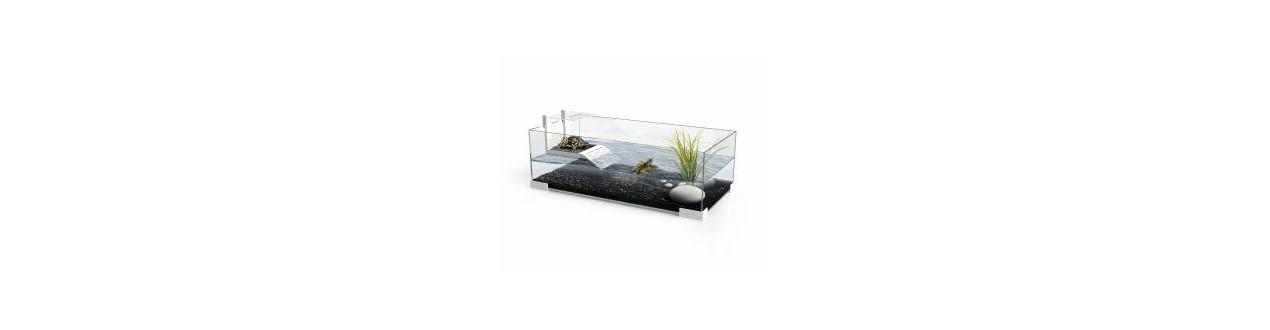 In turtle tanks
