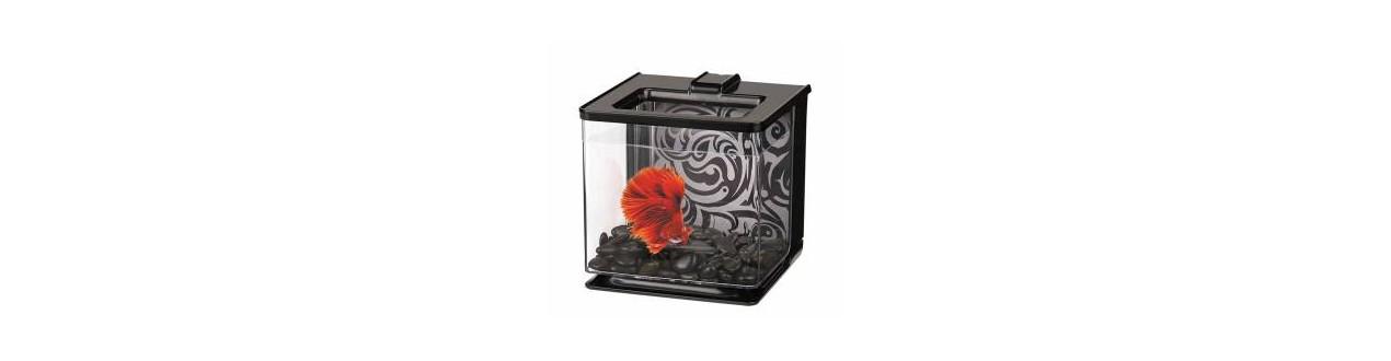 Jar for fish