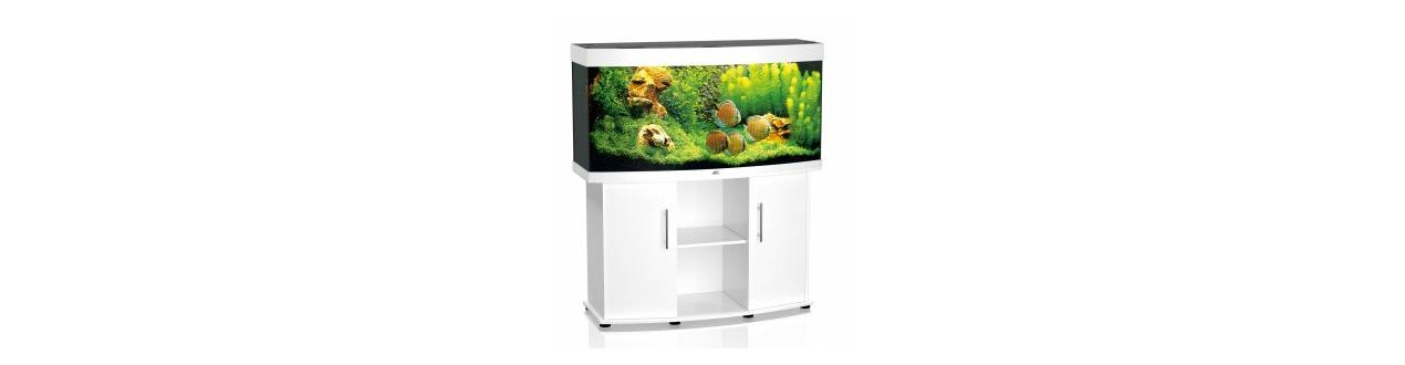 Aquarium & furniture