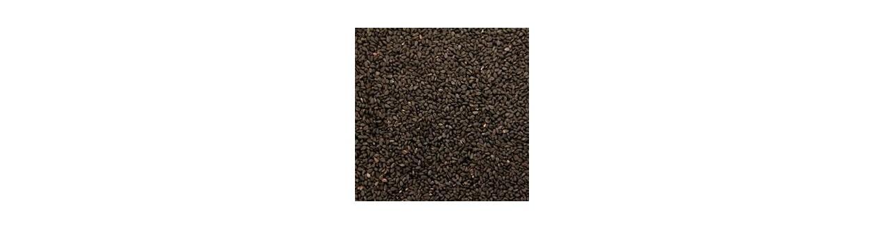 Seeds simple