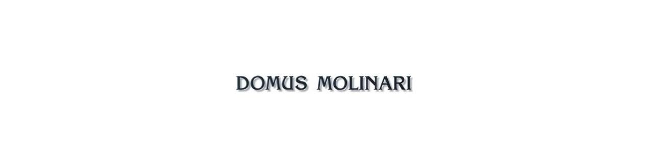 Domus Molinari