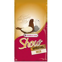 Show Plus I.C.⁺